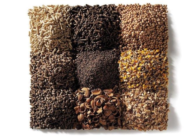Biomassa, che cos'è?
